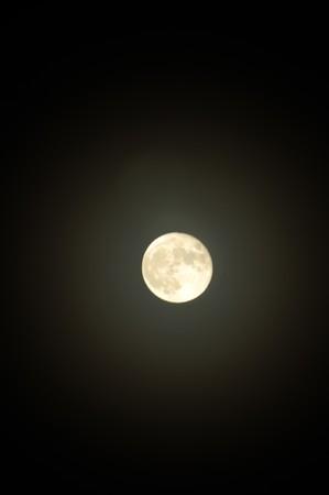 mystique: The shine full moon on the dark sky.
