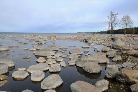 erratic: The erratic boulder in Baltic sea in Esthonia.
