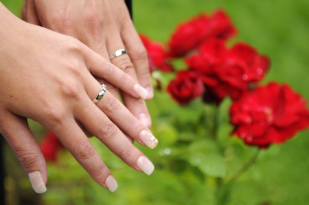 The newlyweds hands with wedding rings and red rose
