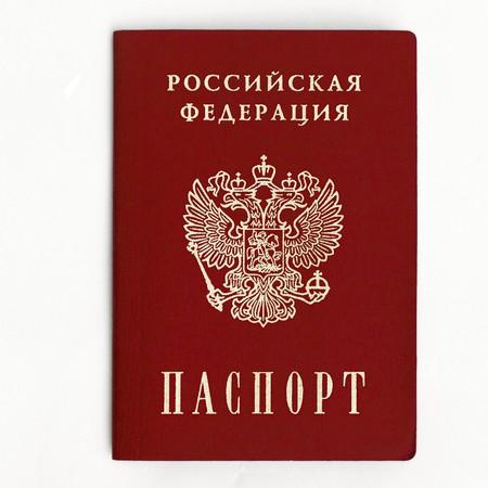 pasaporte: una imagen de pasaporte ruso sobre un fondo blanco