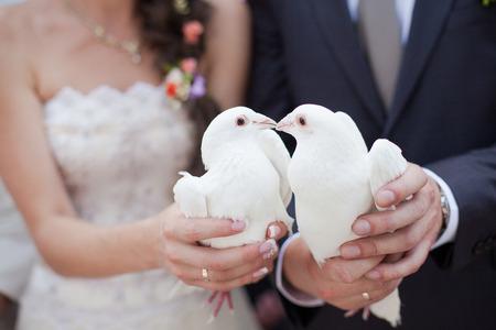 bonhomme blanc: Deux doves.Wedding blanc Banque d'images