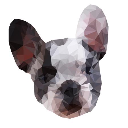 French Bulldog triangular. Low poly. Vector illustration. White background. Eps10. 矢量图像