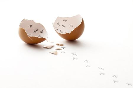 libertad: Un huevo roto y las huellas de chick caminando lejos