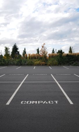 lines: Vertical photograph of a parking lot with the word COMPACT in all spaces with trees and sky in background.