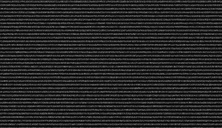 glitch: Widescreen statici bande mostrando sullo schermo di un monitor. immagine � in bianco e nero. Archivio Fotografico