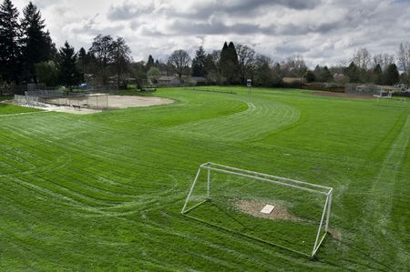 cut grass: Empty freshly cut green grass field with white soccer goal
