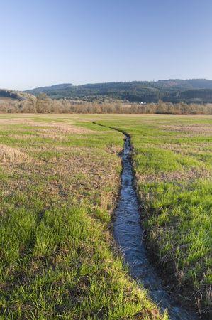 rill: A narrow water river stream going through a green grass field landscape. Stock Photo