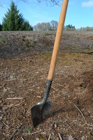 appears: A shovel stuck in dirt. It appears to have been used before. Yard work.