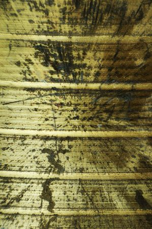 grooves: This grunge gold metal background texture has grooves in it and is rusting with decay.