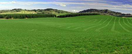 Panorama view of Green field freshly cut with lawn showing. Blue sky and green grass with mountains in between. photo