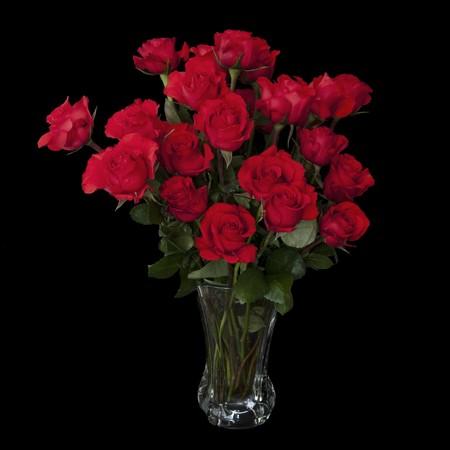 rosas negras: Dos Docena Rosas Rojas aislados en un fondo negro con los tallos verdes en un florero de vidrio grande con agua. Copyspace en los cuatro lados.