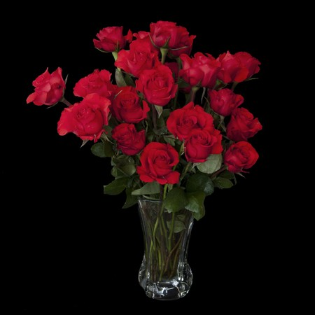 Two dozen red roses isolated on black background with the green stems in a large glass vase with water. Copyspace on all four sides.