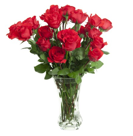 glass vase: Two dozen red roses isolated on white background with the green stems in a large glass vase with water. Copyspace on all four sides. Stock Photo