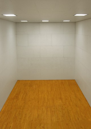 Large empty room with a wooden floor and white wooden tile walls with square lights on the ceiling and lots of open blank empty space. Stockfoto