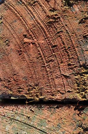 grooves: The surface of a brick that has been scraped and damaged. It has chipped grooves and markings in it