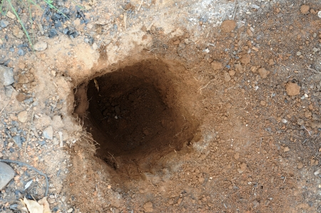 A one foot dirt hole dug into the ground.