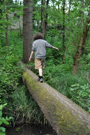 A child walking across a fallen tree going across a river in the woods