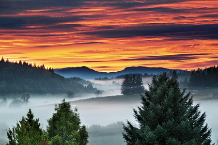 mountain scene: A beautiful sun rise or sunset with a red and purple cloudy sky with foggy mist around the mountains and trees in a beautiful and peaceful rural country scene.