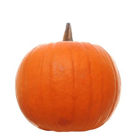 calabaza: Calabaza naranja aislado en un fondo blanco