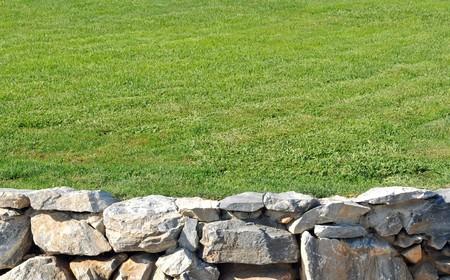 sone: Sone wall Masonry containing fresh green grass.