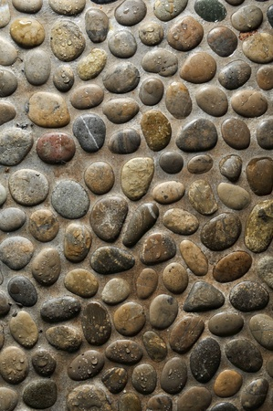 Wet round stone rock texture with tiny water drops on them and dramatic lighting. photo