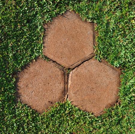pathway stones on green grass photo