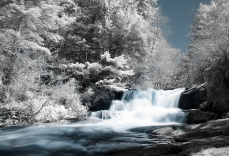 infrared: Alsea Falls, Oregon shot with an infrared filter