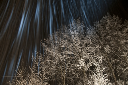 internships: Winter trees covered in ice and snow with long camera exposure while snowing