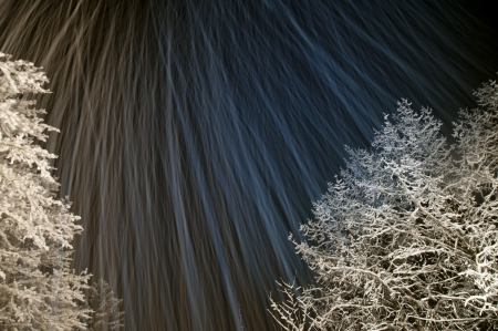 Winter trees covered in ice and snow with long camera exposure while snowing