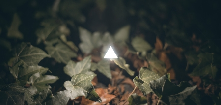 Concept image of a glowing white triangle surrounded by vegetation. Abstract of new age spirituality. Stock Photo