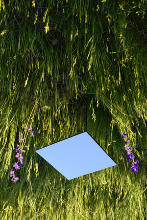 delirium: Mirror cube sitting in a grass field. Abstract composition is turned upside down to create illusion.