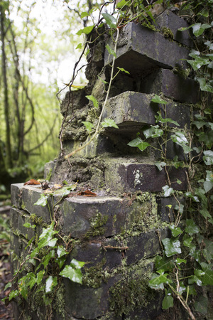ramshackle: Architectural detail of an old broken wall of stone bricks with wild climbing plants, in a forested area Stock Photo