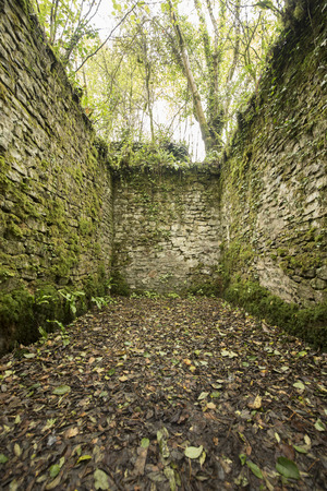 roofless: Old cobblestone ruins creating a room with walls in a forest Stock Photo