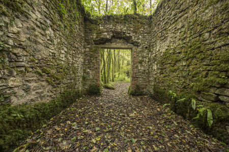 decadence: Old cobblestone ruins creating a room with walls in a forest Stock Photo