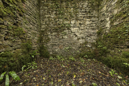 claustrophobic: Old cobblestone ruins creating a room with walls in a forest Stock Photo