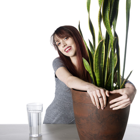 possessive: Smiling Pretty Young Woman Embracing a Green Plant in a Pot on Top of the Table with a Glass of Water on the Side. Isolated on White Background.