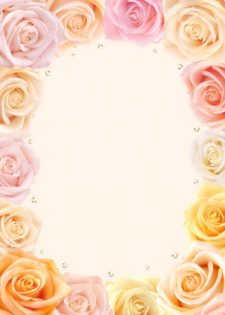 Fresh multicolored roses frame with light background Stock Photo