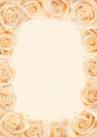 Creamy roses frame with background for text photo