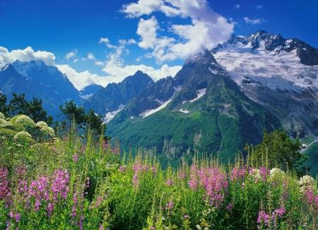 dombai: Peak Ine in Dombai, Western Caucasus, Russia