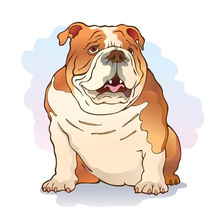 Illustration of english bulldog sitting on the ground