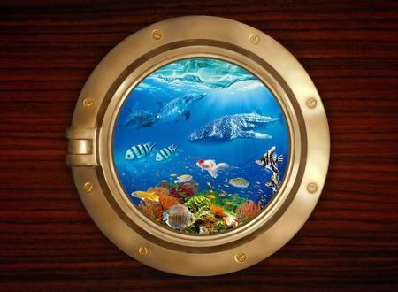 Underwater world, viewed through the porthole