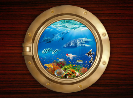 Underwater world, viewed through the porthole