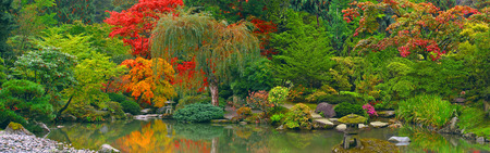 Japanese garden with pond panoramic view Stock Photo