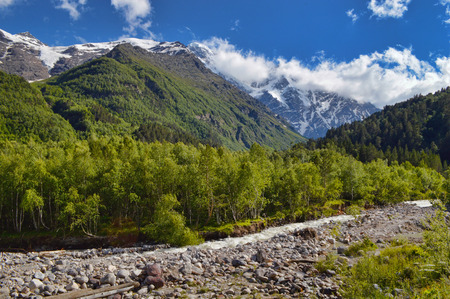 Baksan river valley and slopes overgrown with wood at the foot of Elbrus mountain. Mountain peaks covered with snow in the background