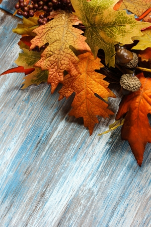 decaying: Autumn Fall Leaves on wooden background decaying halloween decoration Stock Photo