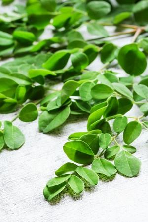 mlonge: Fresh Moringa leaves  Drumstick leaves  Medicinal plants, selective focus