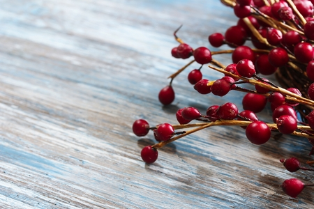 Red Berries on blue wooden background with copy space  Christmas background, selective focus