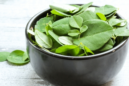 marango: Fresh Moringa leaves in a black bowl, selective focus Stock Photo