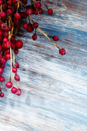 red berries: Red Berries on blue wooden background with copy space  Christmas background, selective focus