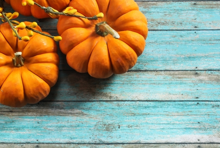 Fall Background with Mini Pumpkins / Autumn background with pumpkins on rustic blue background, selective focus with copy space